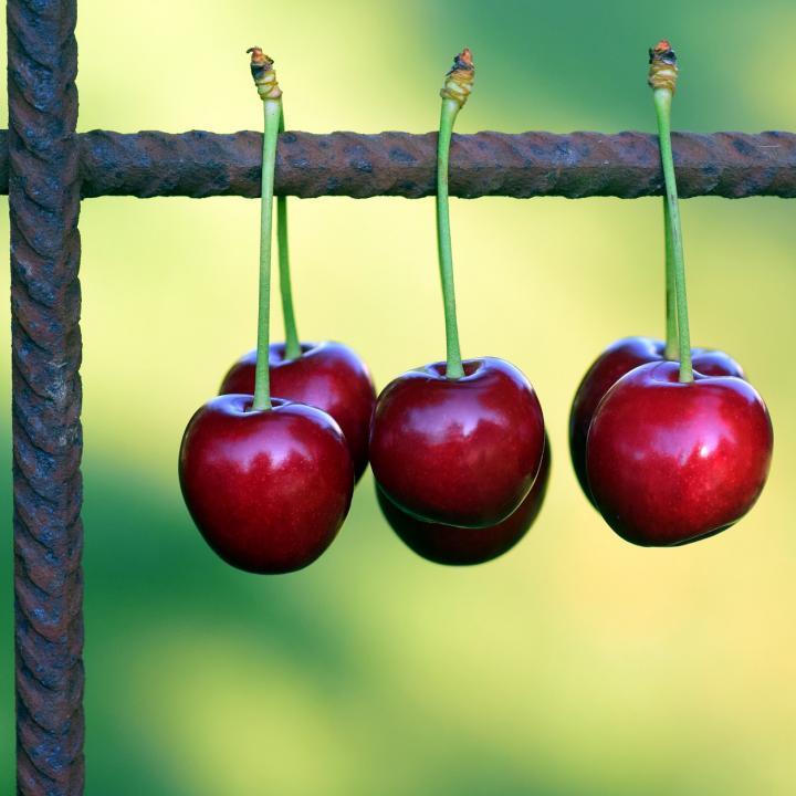 5 beneficios de las cerezas